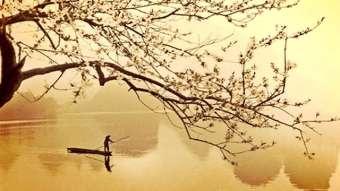 El haiku: una instantánea poética | Sin Categoría
