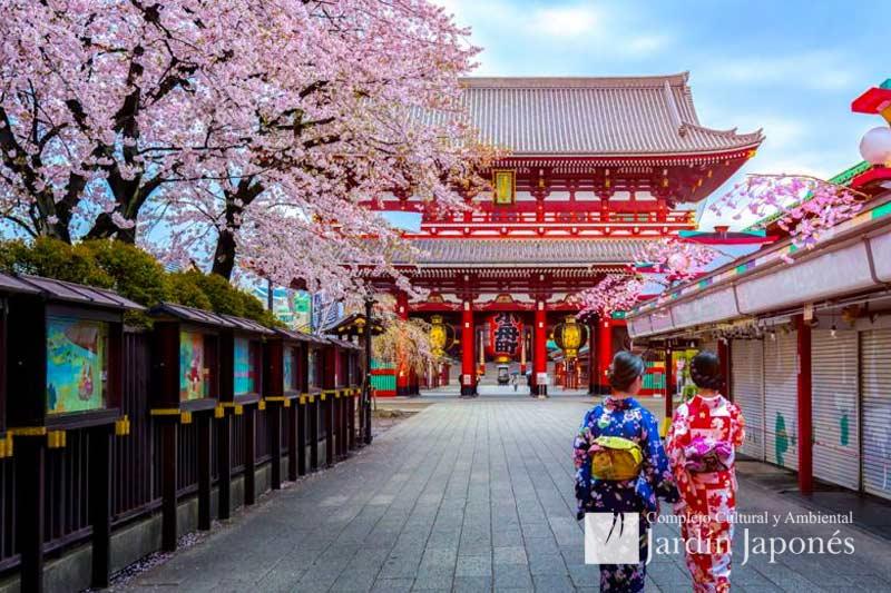 Viaje Cultural | Jardin Japones Buenos Aires