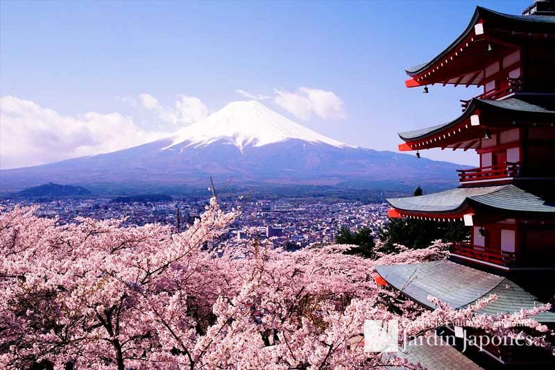 Jardin Japones Viaje Cultural